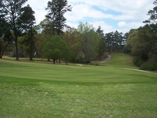 Houston County Georgia Golf Courses