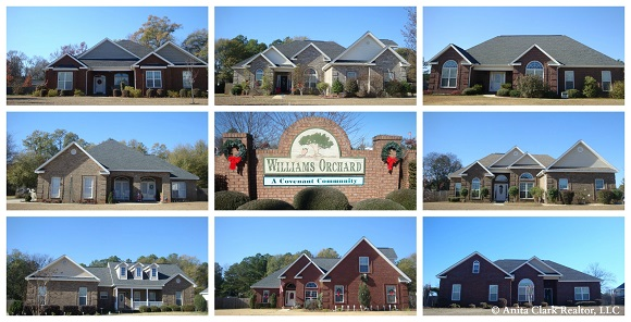 Williams Orchard Subdivision in Byron GA 31008