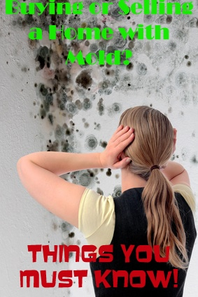 Buying or Selling a Home with Mold. Things You Must Know