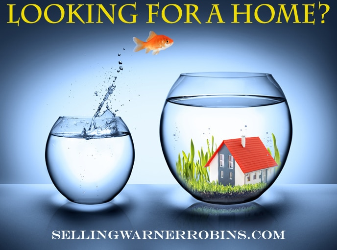 Are You Looking for a Home