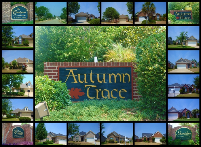 Autumn Trace at Eagle Springs Subdivision in Centerville GA 31028