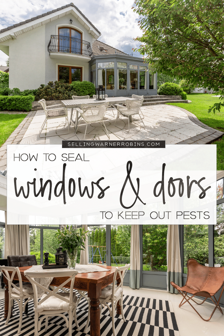 How to Seal Windows and Doors to Keep Out Pests