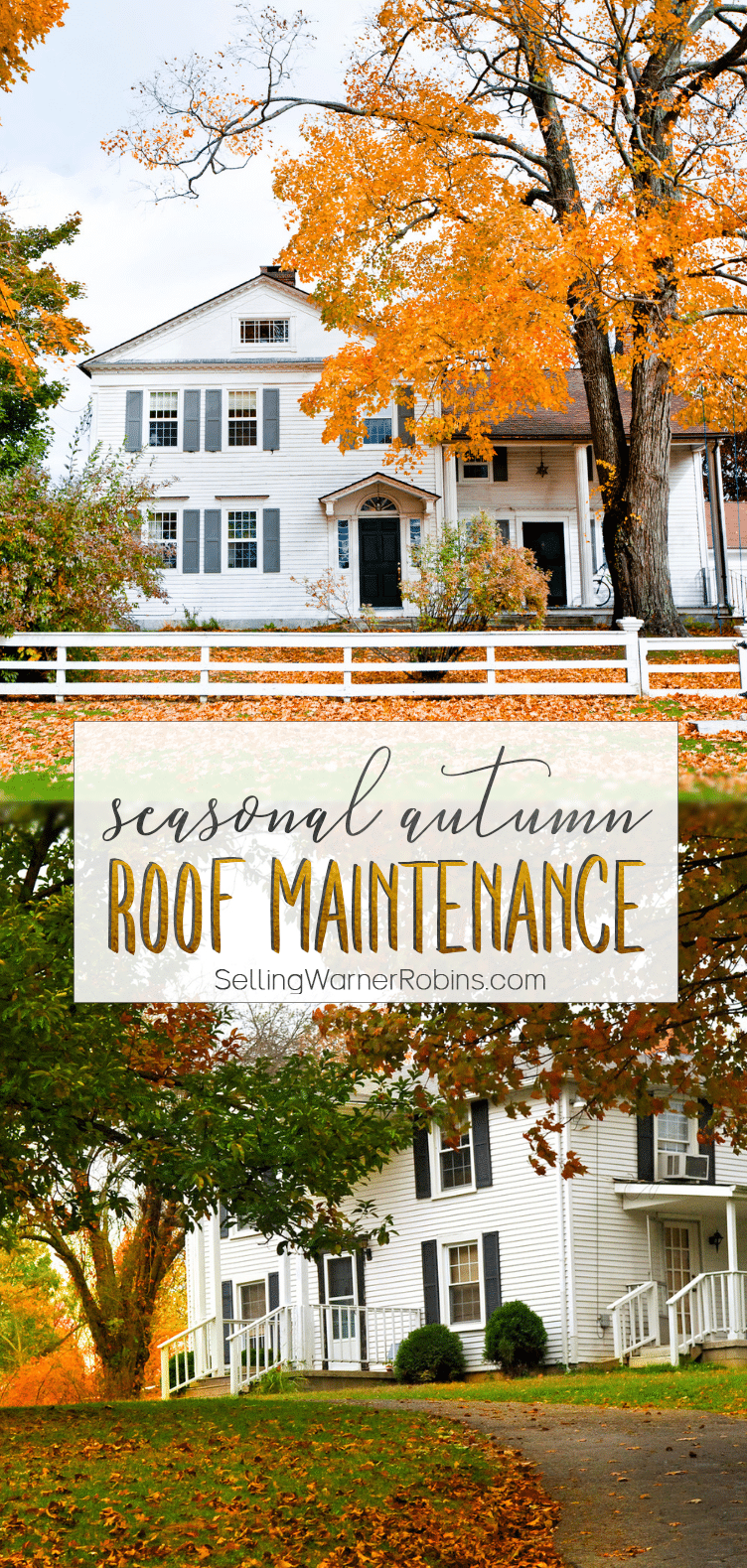 Roof Maintenance for Autumn